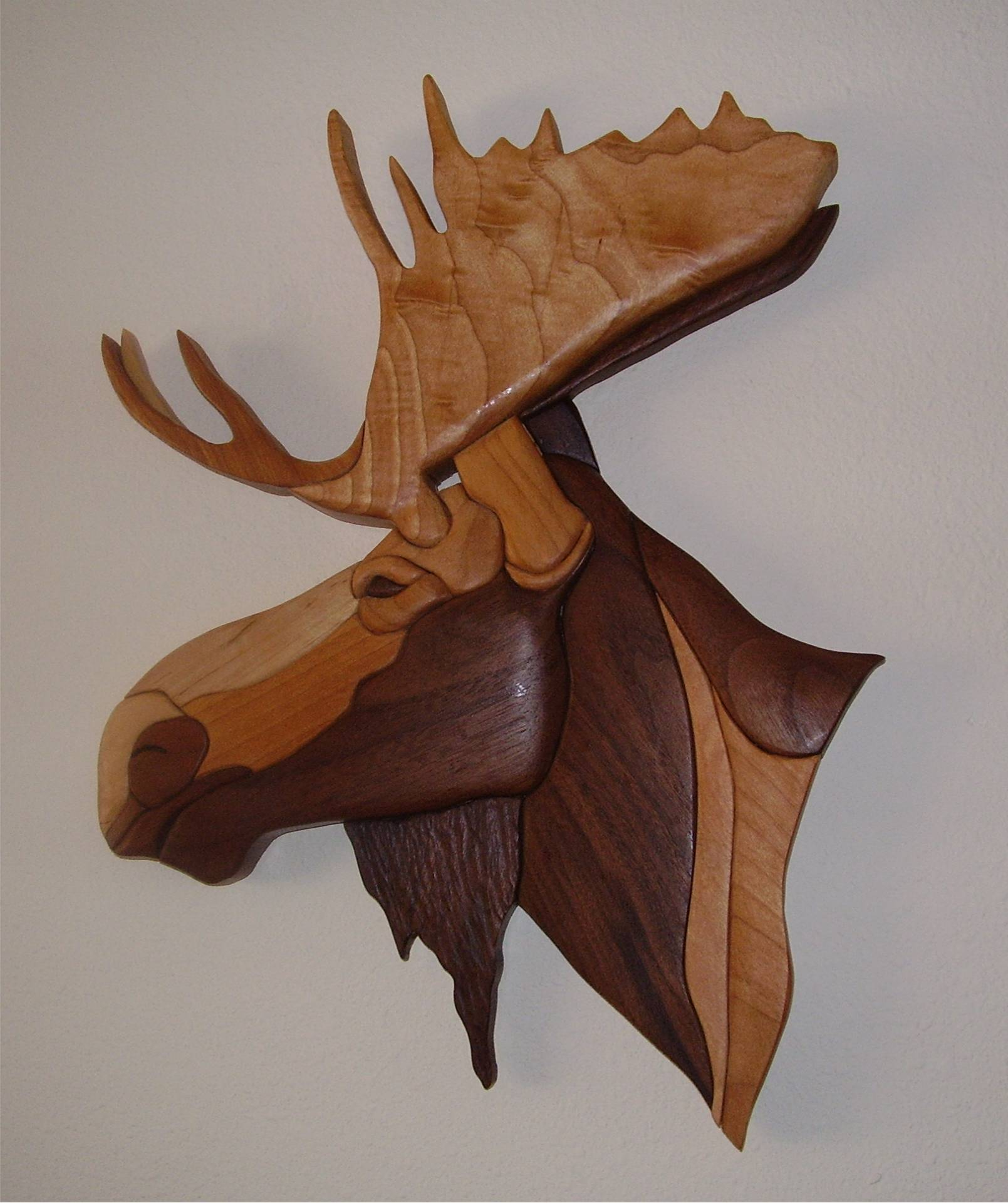 Moose - Sale Price $105
